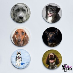 LOT 6 MAGNETS CHIENS